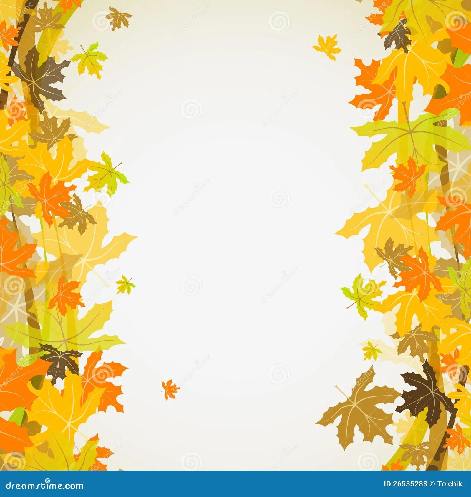 hight resolution of maple autumn background vector