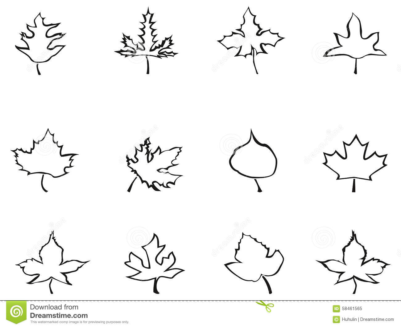 Maple Outline Stylized Leaves Stock Vector