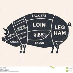 Pork Butcher Cuts Diagram 2001 Dodge Neon Ignition Wiring Meat Diagrams For Shop Scheme Of Animal Silhouette
