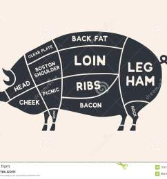 meat cuts diagrams for butcher shop scheme of pork animal silhouette pork  [ 1300 x 957 Pixel ]