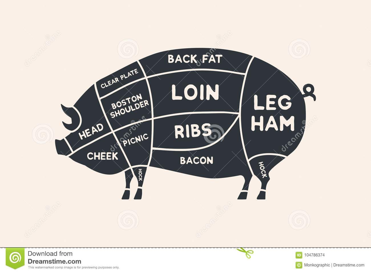 hight resolution of meat cuts diagrams for butcher shop scheme of pork animal silhouette pork