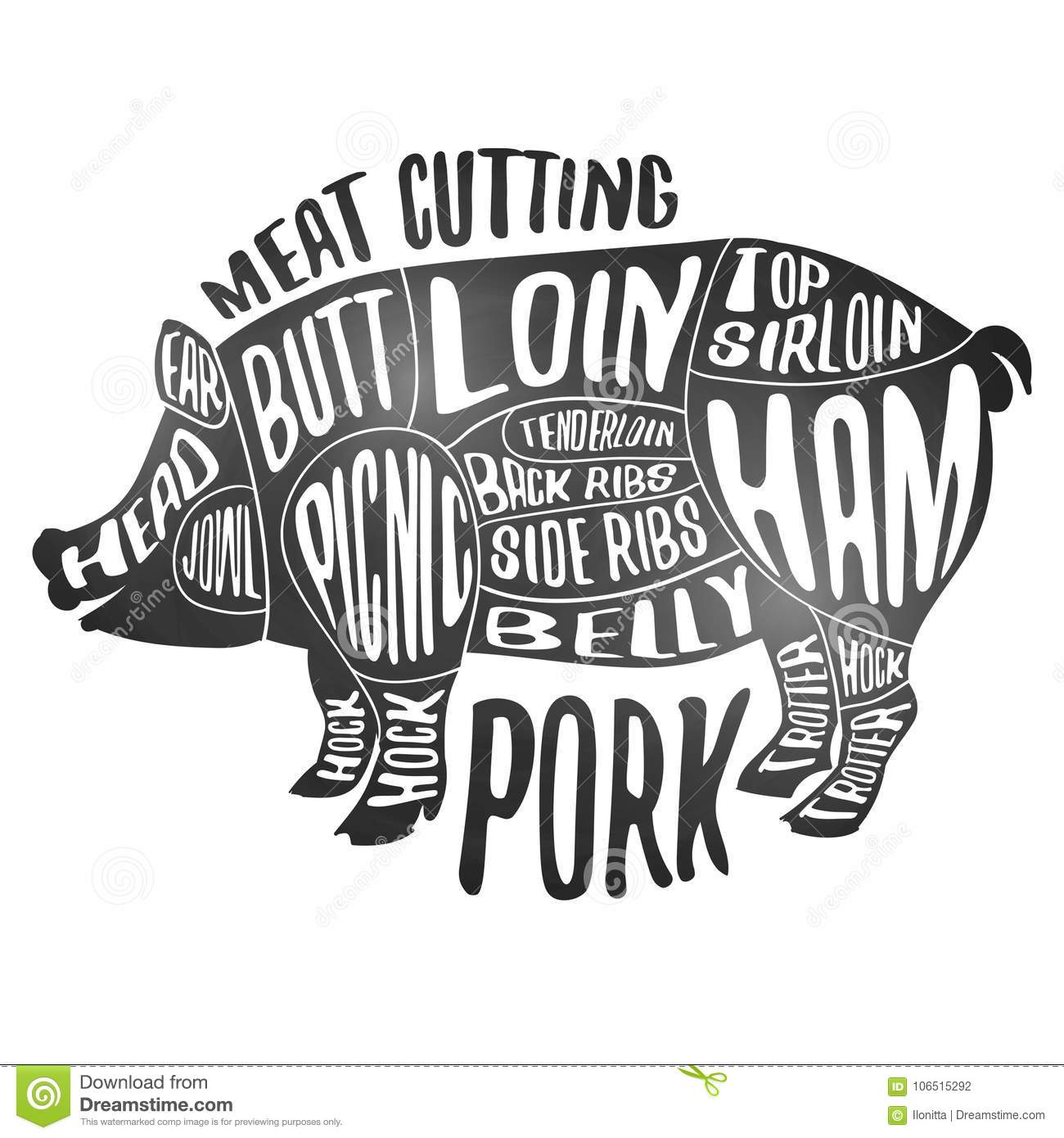 pig cuts diagram of carbohydrate digestion meat cutting pork white chalkboard poster cut set butcher scheme and guide