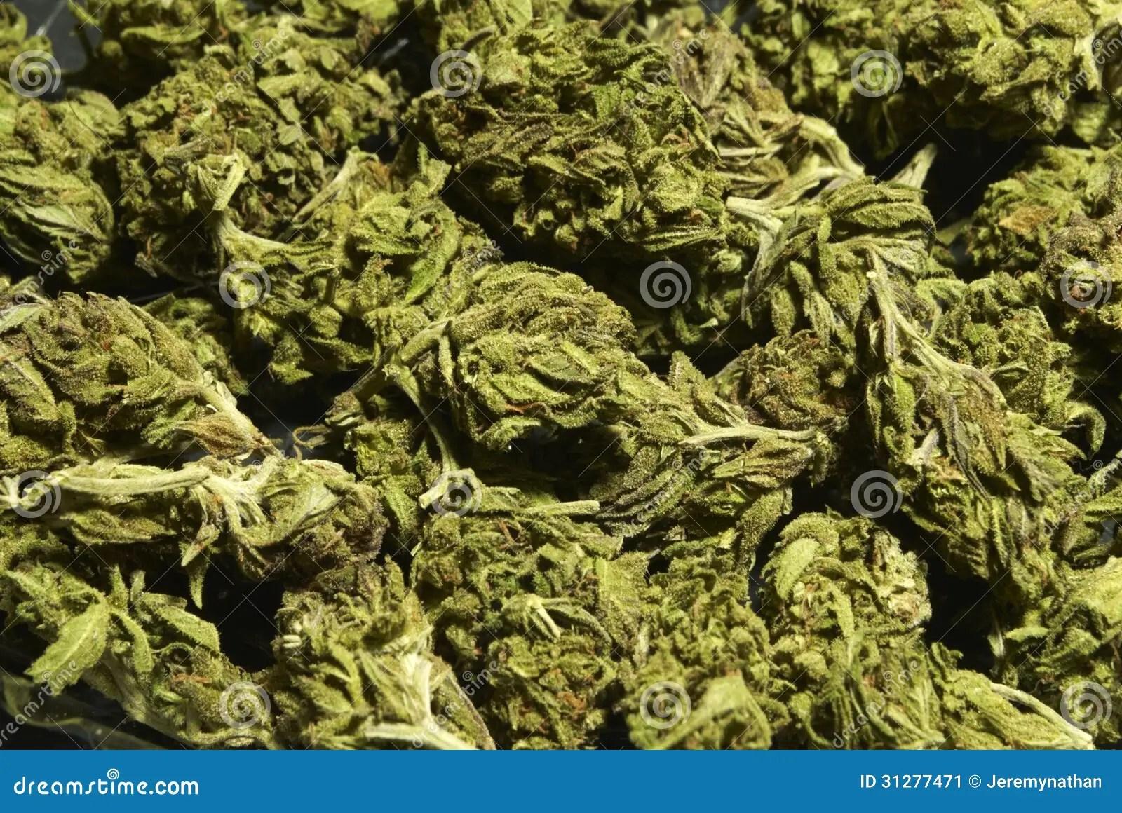 Marijuana Hd Wallpapers Free Download Medical Marijuana Background Stock Image Image 31277471
