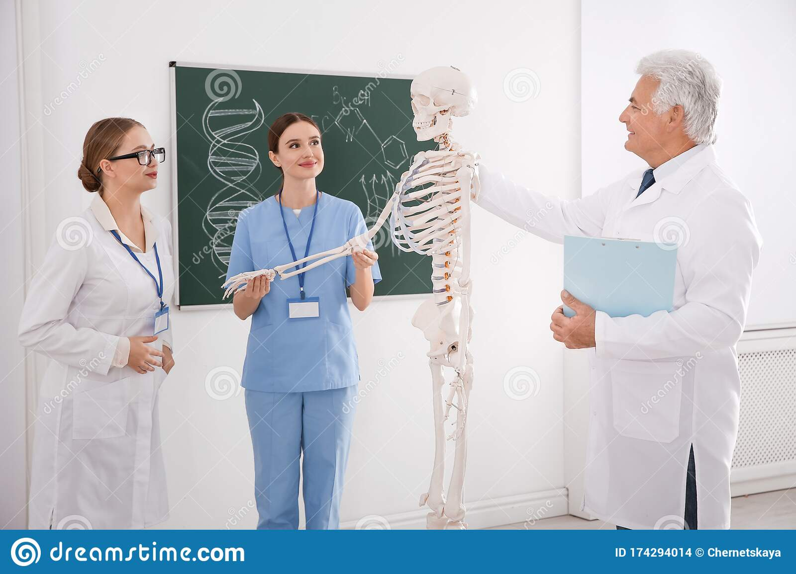 Medical Students And Professor Studying Human Skeleton