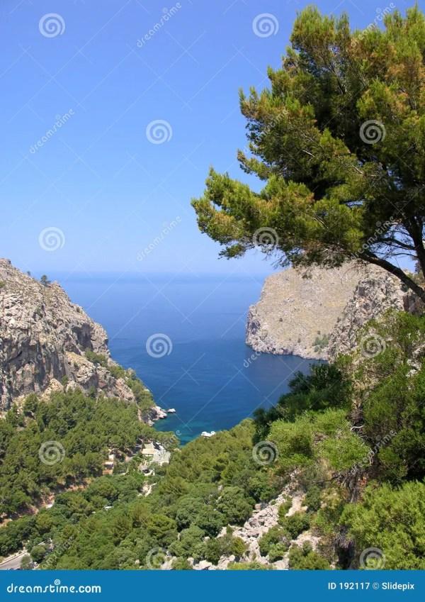Mediterranean Bay stock image. Image of plant, majorca ...