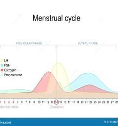 menstrual stock illustrations 2 397 menstrual stock illustrations vectors clipart dreamstime [ 1300 x 1115 Pixel ]