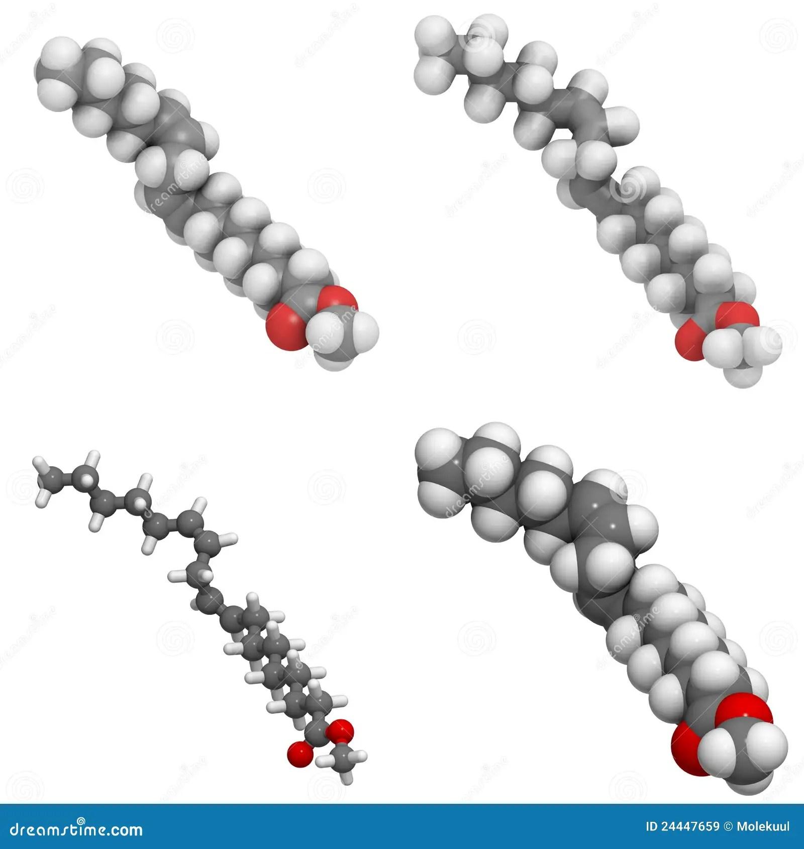 Methyl Lineolate (biodiesel) Molecule Royalty Free Stock
