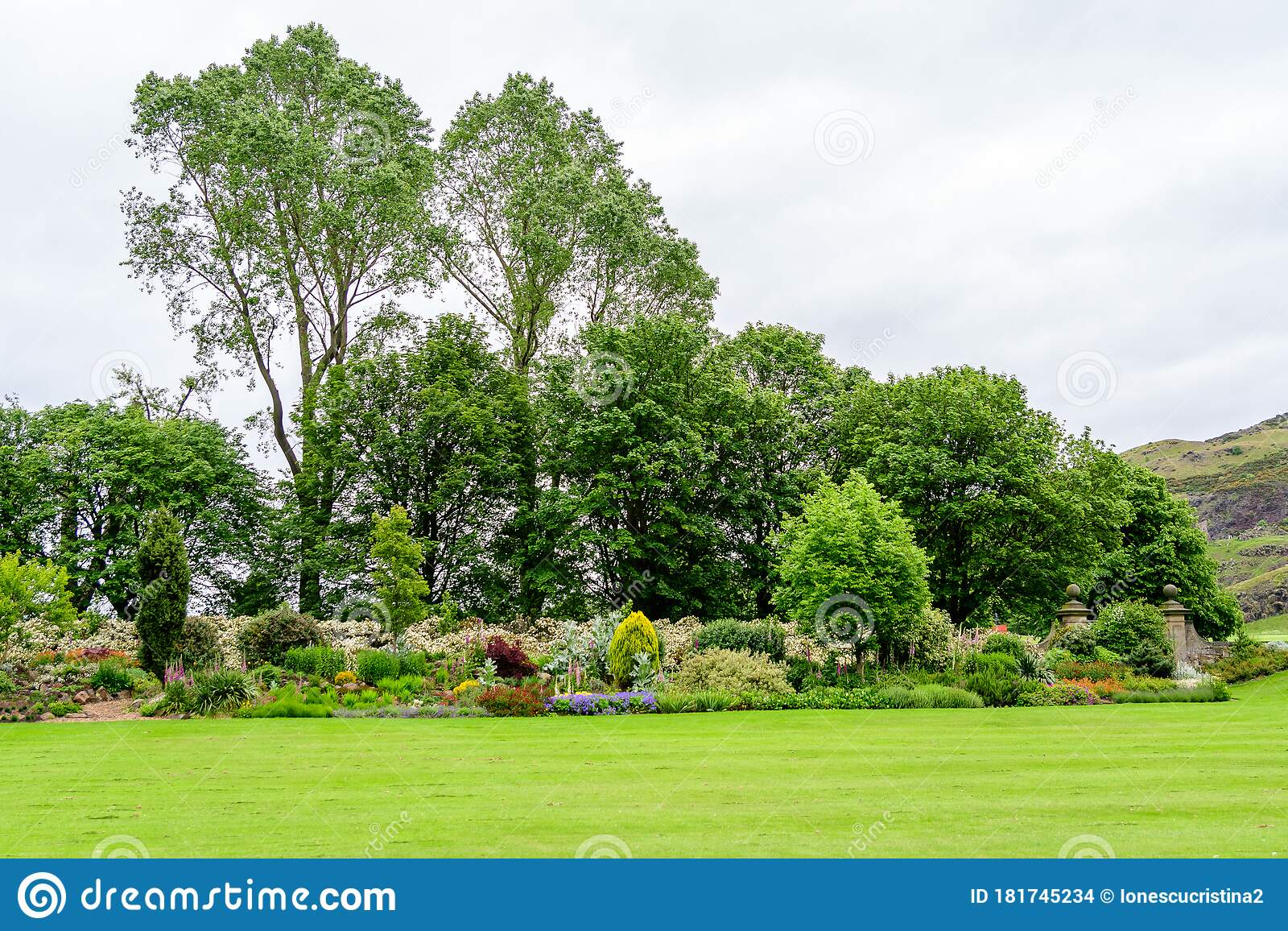 Minimalist Garden Landscape With Trees Bushes And Different Plants In A Cloudy Day In Scotland United Kingdom Typical British C Stock Photo Image Of Natural Perspective 181745234