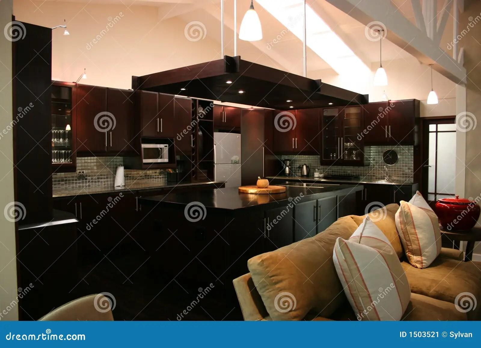 Modern African Interior Kitchen Stock Image  Image 1503521