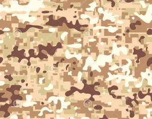 Camo Stock Photos Images Royalty Free Camo Images And