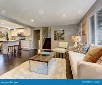 Modern Living Room With Dark Hardwood Floor. Stock Image ...