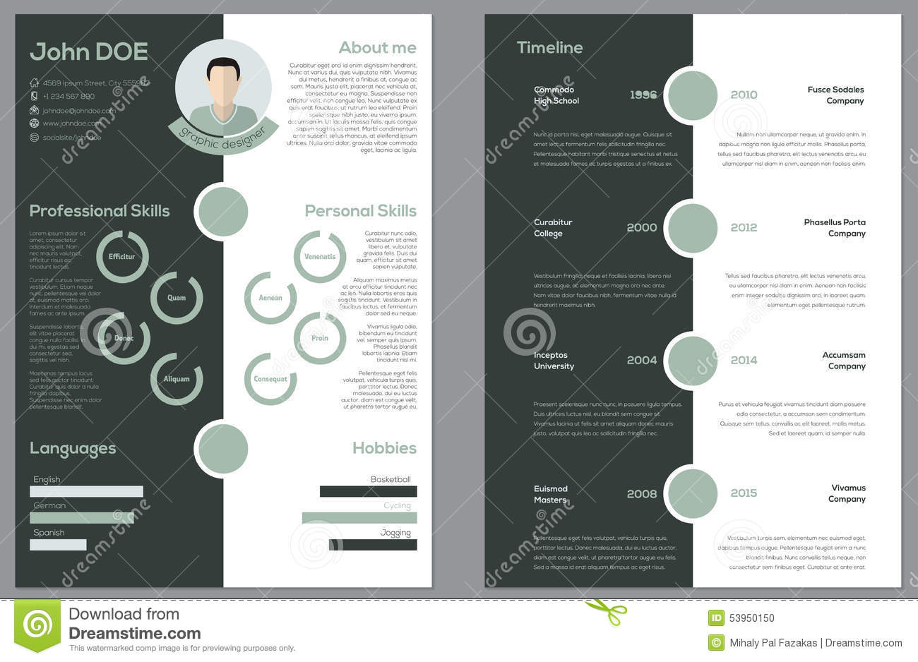 Resume Double Sided Modern 2 Sided Cv Resume Stock Vector Image 53950150