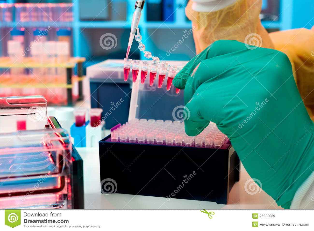 Molecular Biology In The Lab Stock Image