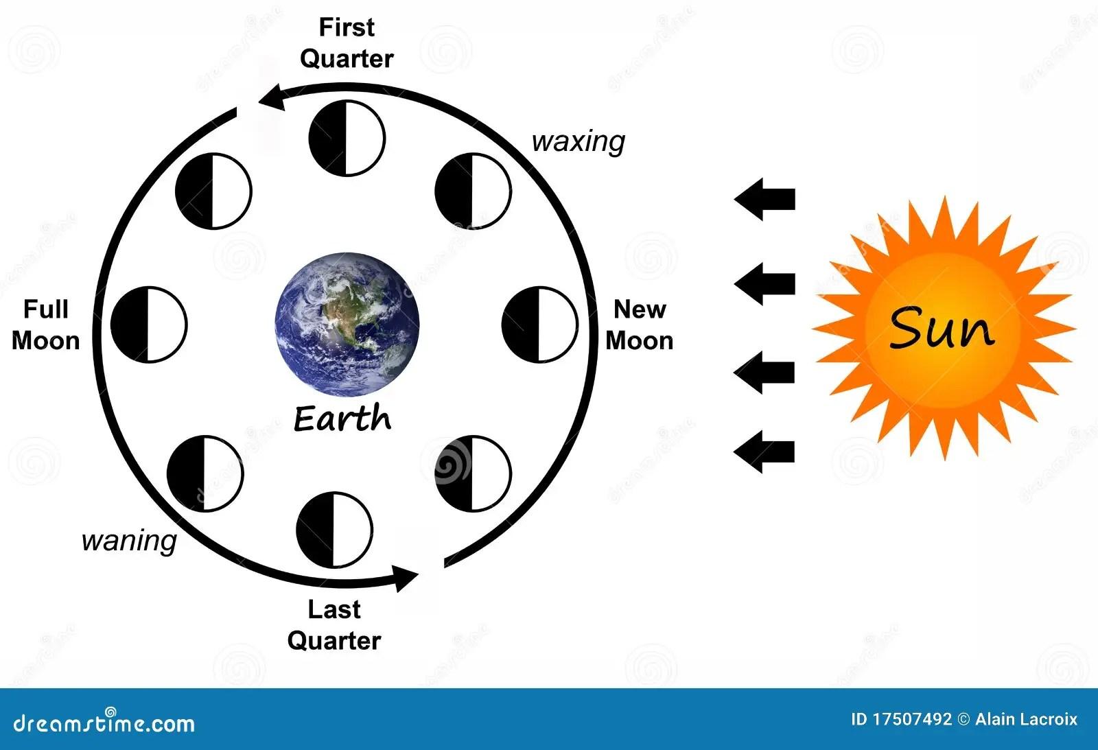 Mondphasen Stock Abbildung Illustration Von Kalender
