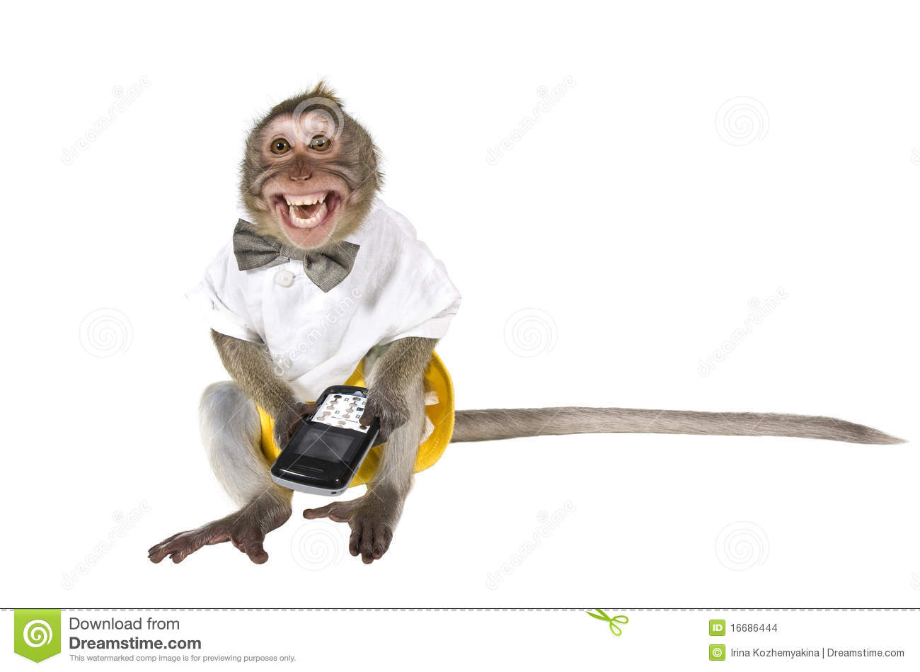 Caged Girl Wallpaper A Monkey With A Cell Phone A Phone Is Broken Stock Photo