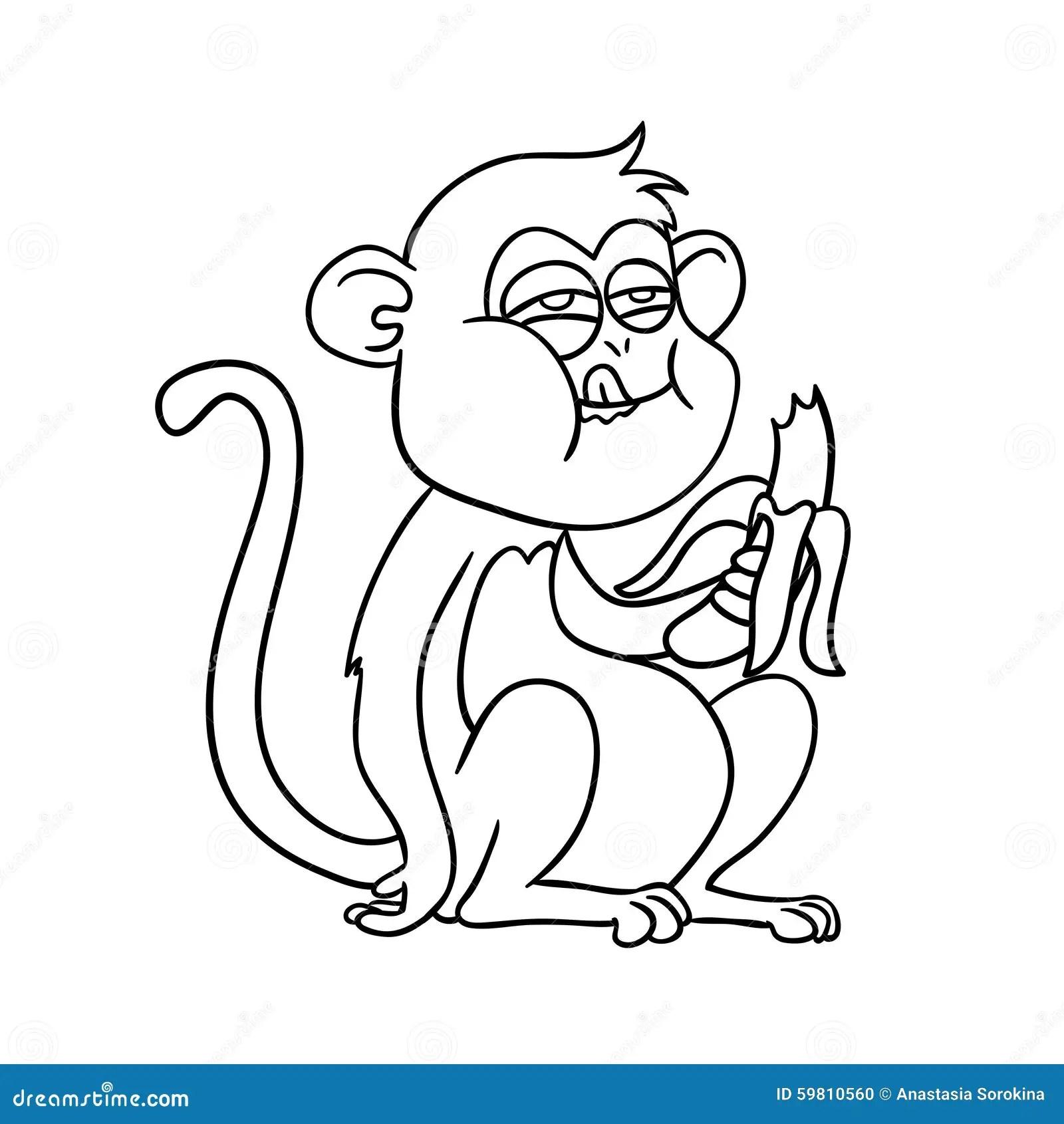 Monkey Eating A Banana Stock Illustration