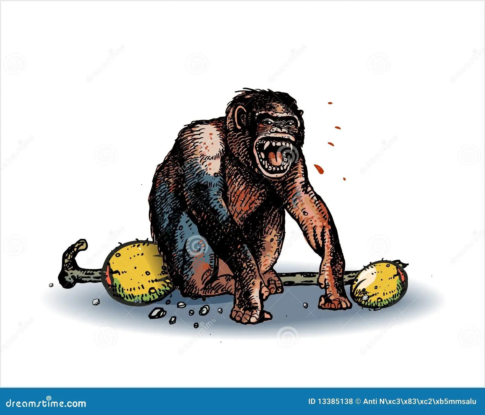 Wallpaper Cute Light Pink Monkey Screaming Royalty Free Stock Photos Image 13385138