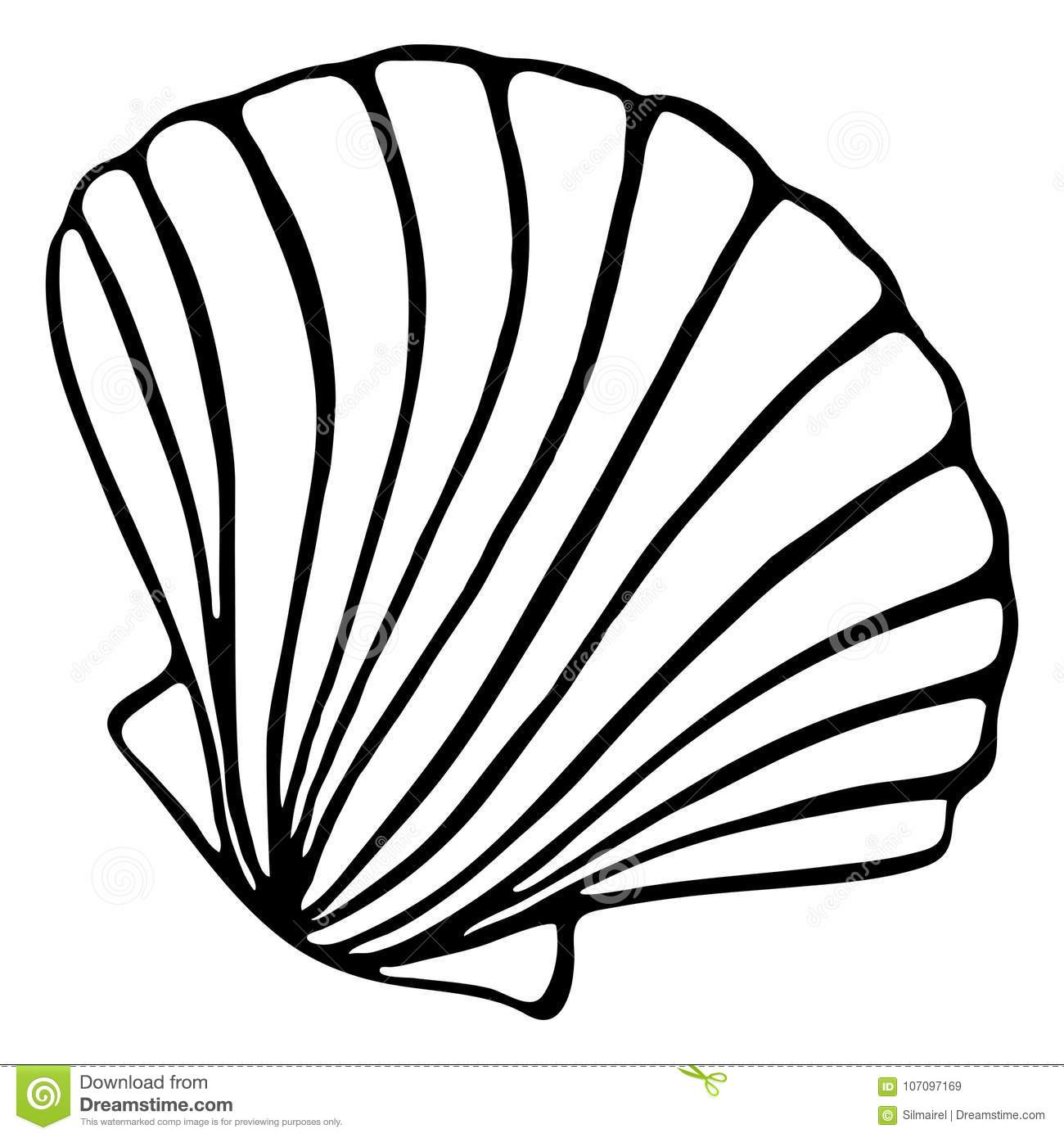 Monochrome Black And White Sea Shell Seashell Silhouette