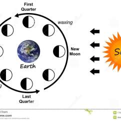 Diagram Of Moon Phases Printable Number The Stars Plot Stock Illustration Calendar