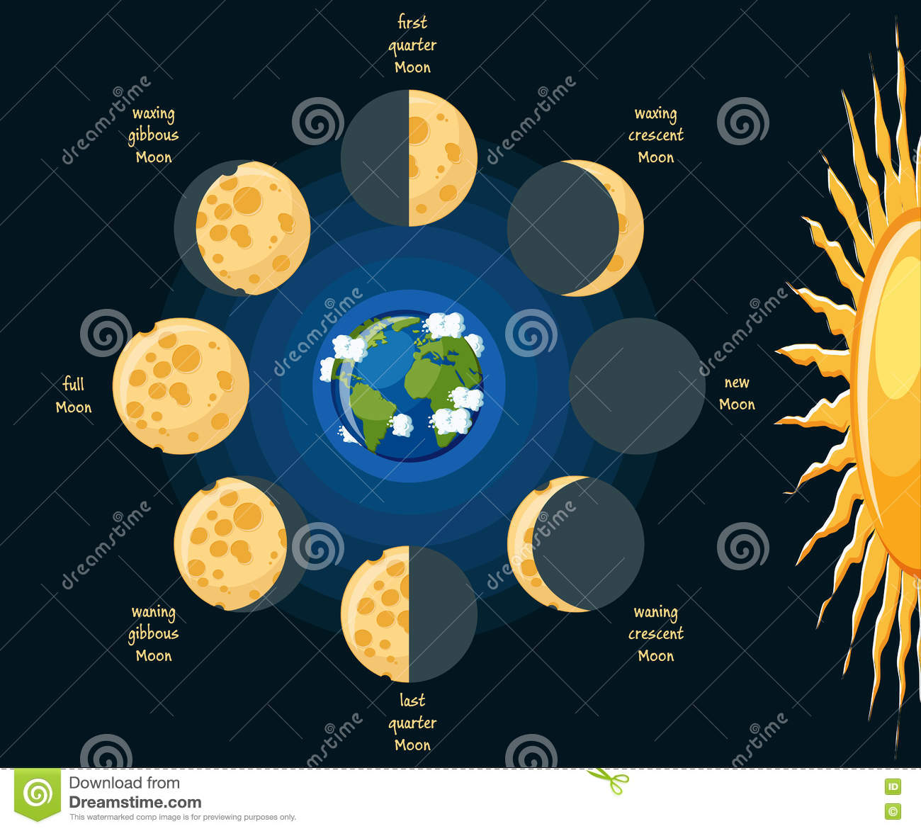 Moon Phases Stock Vector Illustration Of Astronomy