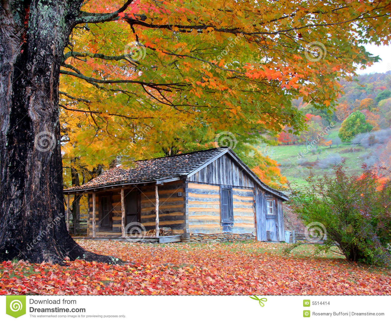 Vector Wallpaper Fall Colors Mountain Cabin In Autumn Stock Photo Image Of October