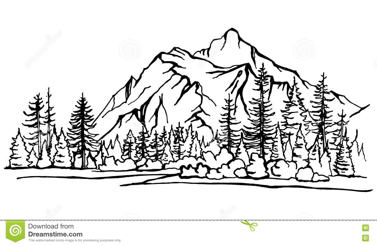 Mountain Landscape, Forest Pine Trees Sketch. Vector