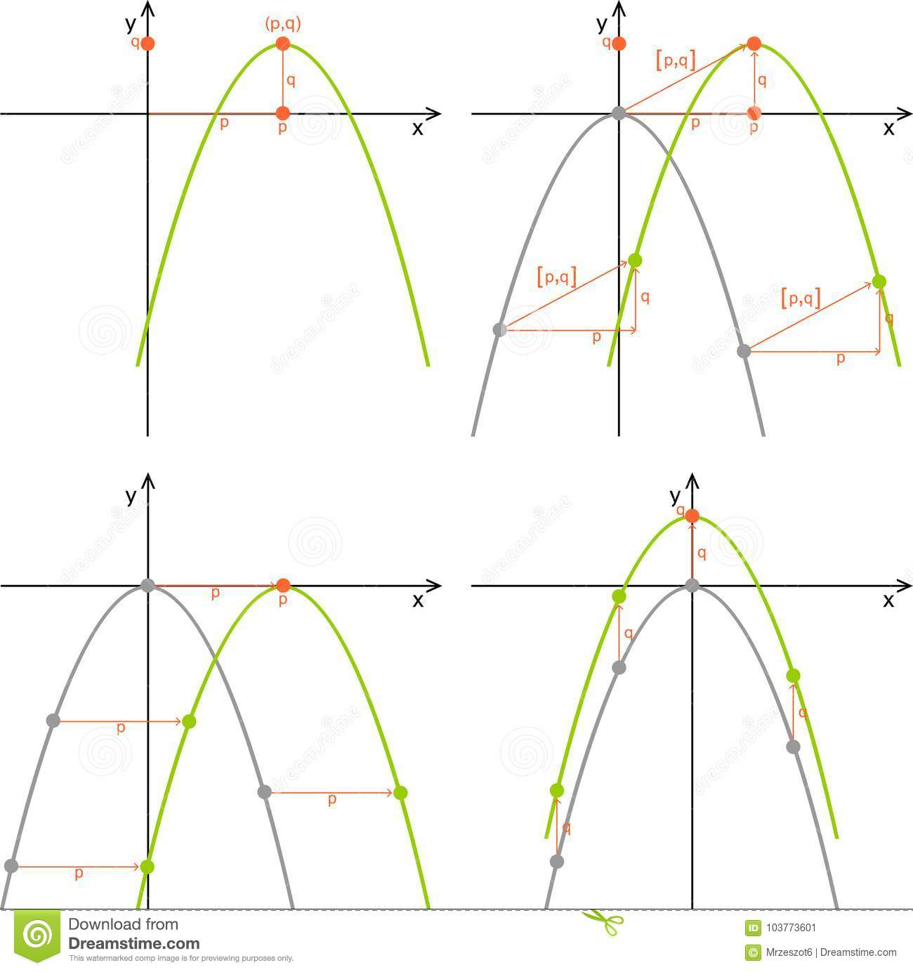 Moving The Parabola Quadratic Function Properties Stock Illustration