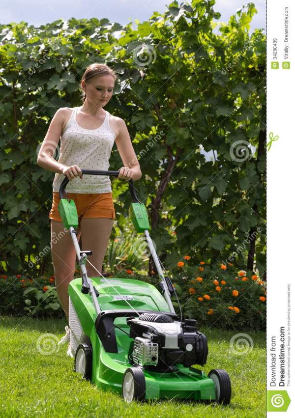 mowing lawn stock
