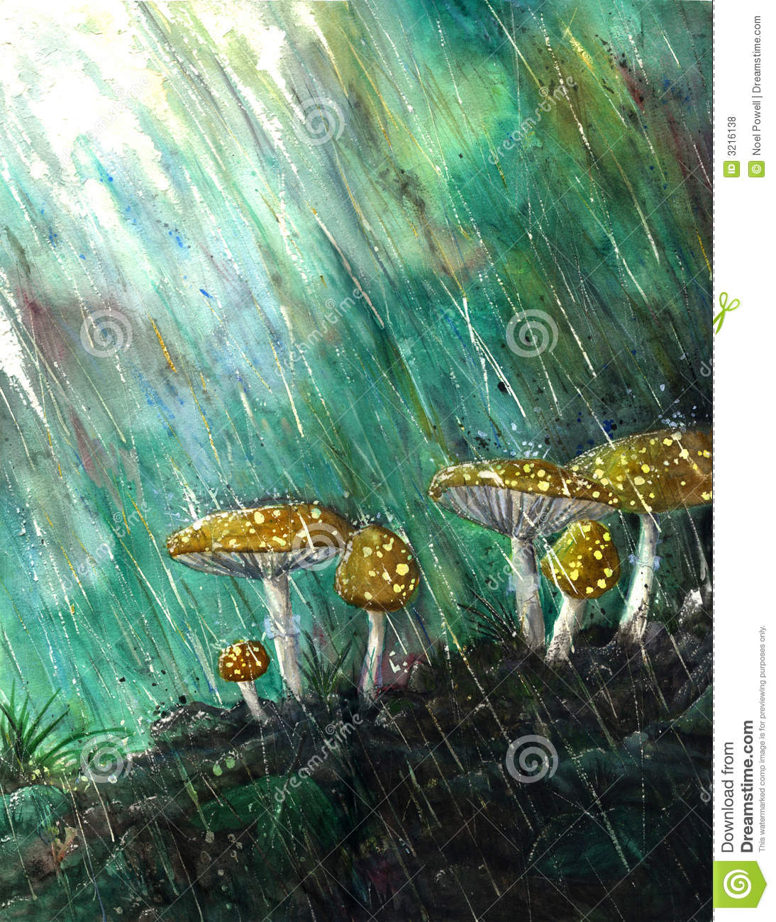 Mushrooms In The Rain Stock Illustration Illustration Of