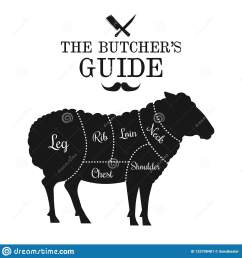 mutton and lamb cut lines diagram graphic poster guide for butcher [ 1600 x 1689 Pixel ]