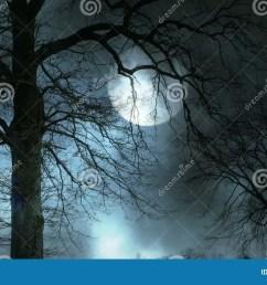 spooky tree silhouette video footage 45044771 megapixl [ 1300 x 821 Pixel ]