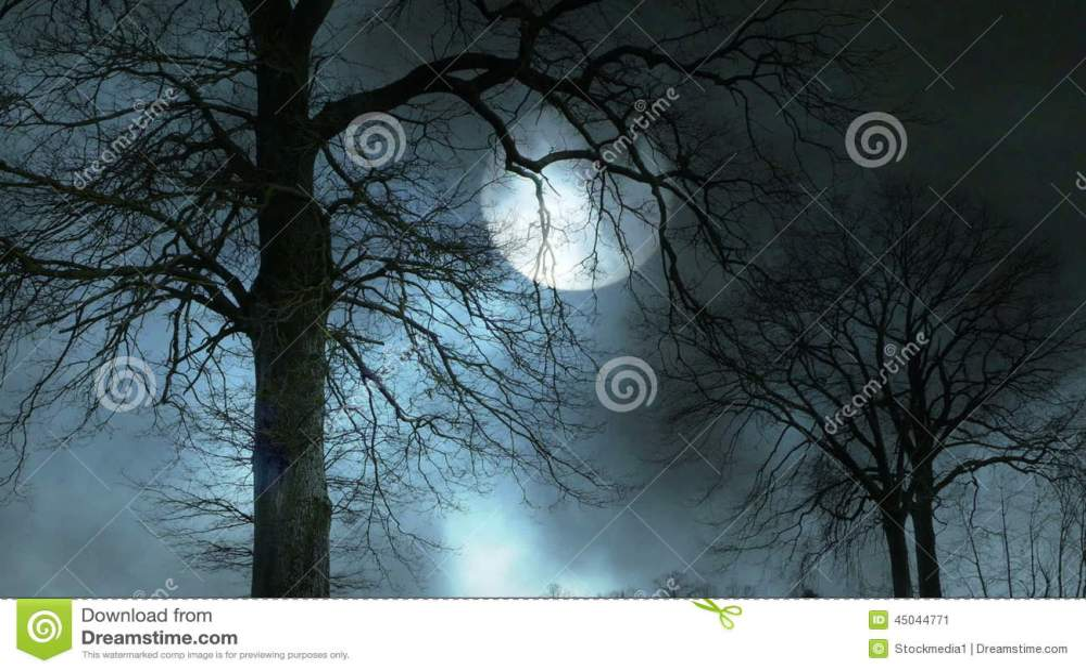 medium resolution of spooky tree silhouette video footage 45044771 megapixl
