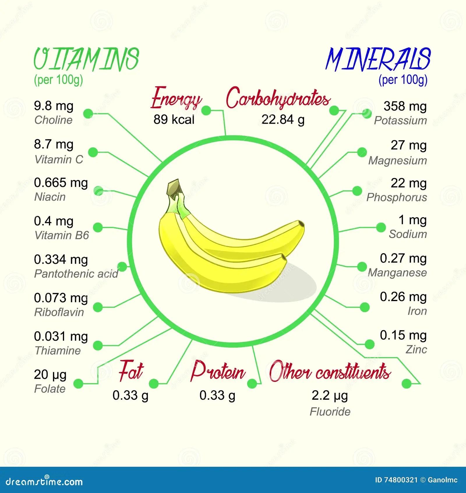 Nahrwert Der Banane Vektor Abbildung Illustration Von
