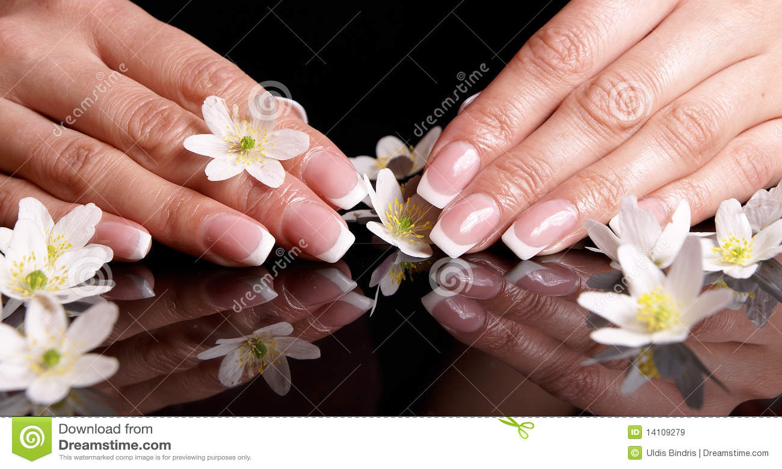 Nail Art Royalty Free Stock Images  Image 14109279