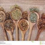 natural health remedies stock photo image of herb, naturopathicherb selection for alternative health remedies in olive wood spoons over papyrus background white willow, irish moss, yarrow, orange blossom,