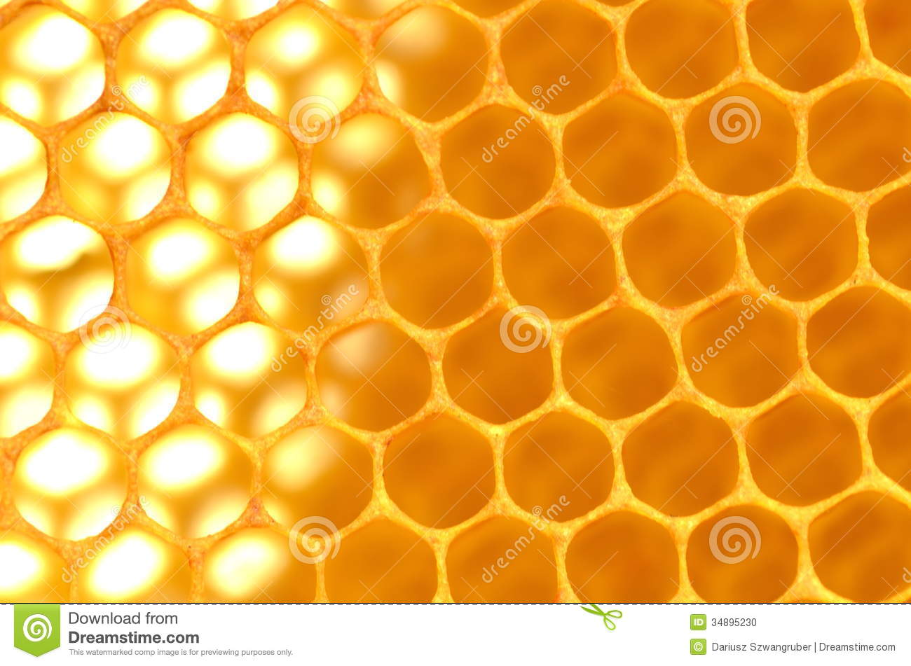 Natural Honeycomb Stock Photo Image Of Nature Hexagonal