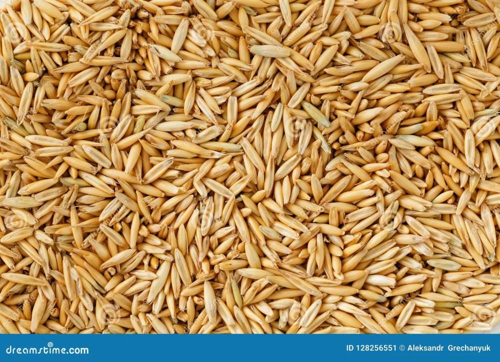 medium resolution of natural oat grains background close up gold grain