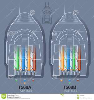 Network Cable Connector Wiring Diagram Stock Vector  Image: 57970895