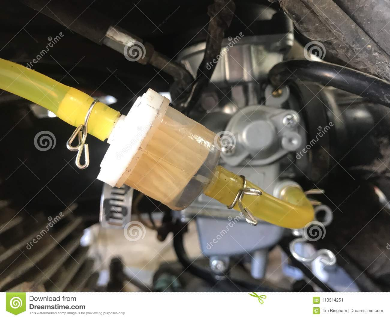 hight resolution of new fuel filter and fuel lines
