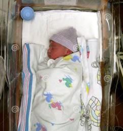 newborn girl stock photos image 24873  [ 1065 x 1300 Pixel ]