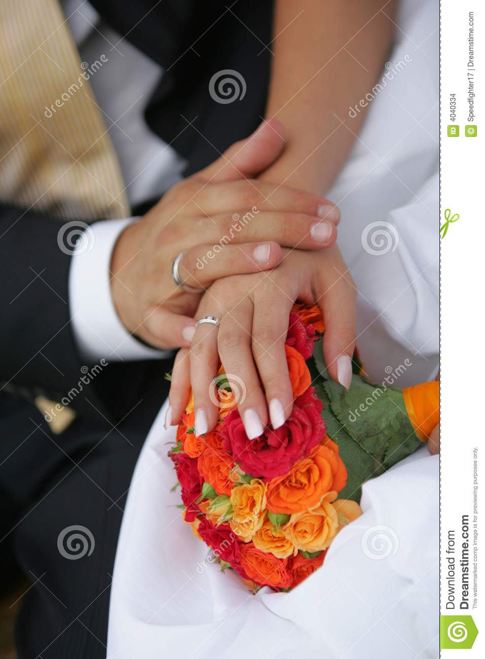 Newly Married Couples Hands Stock Photo  Image of intimacy touching 4040334