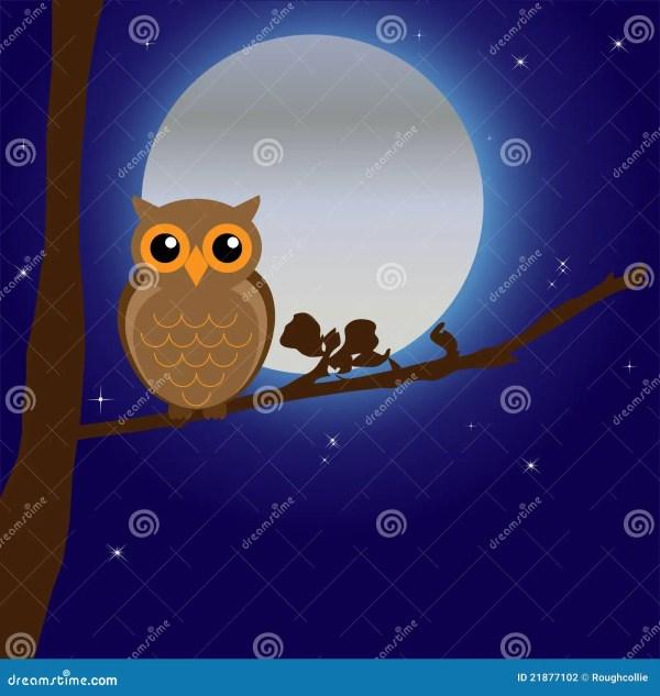 Night Owl Moon