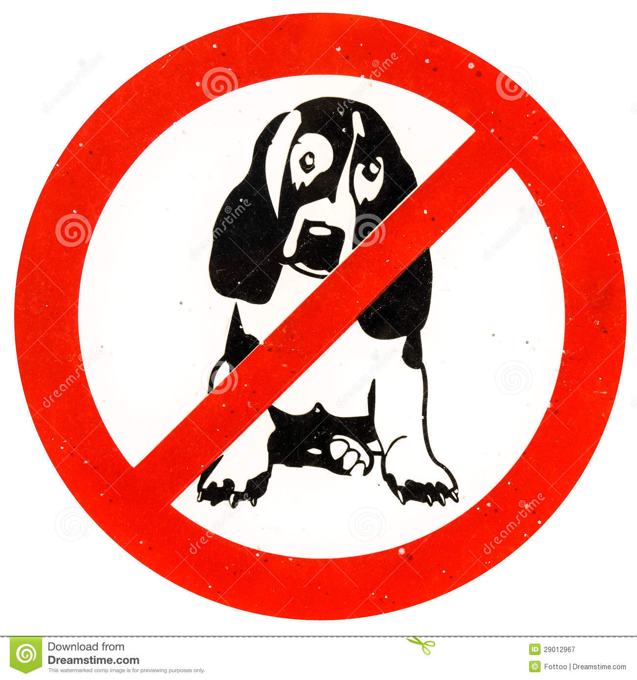 No Dogs Allowed Stock Image Image Of Contemporary Sparse