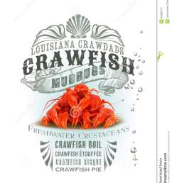 crawfish boil pot clipart www imgkid the image kid [ 1019 x 1300 Pixel ]