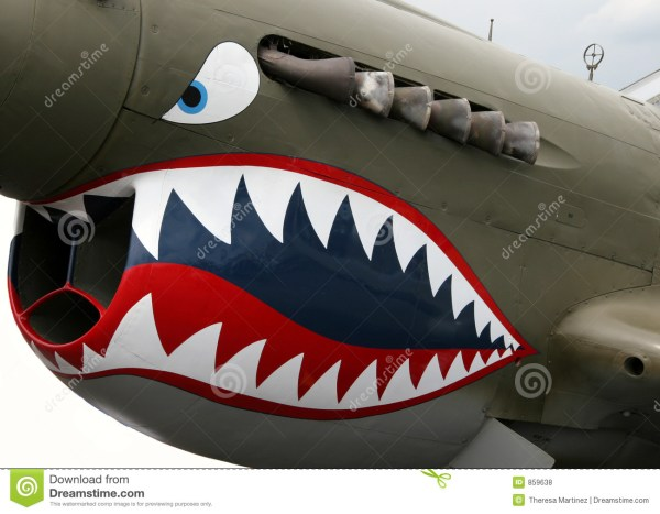 Nose Art Stock Of Ariforce Airport