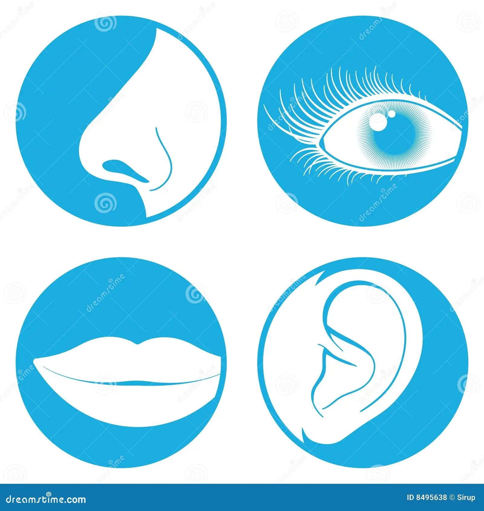 Nose Eye Mouth Ear Pictogram Royalty Free Stock Photos