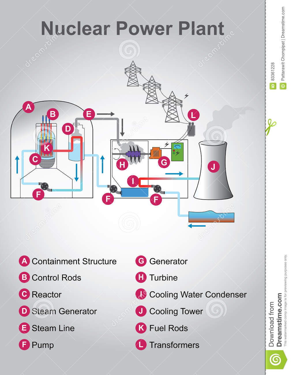 hight resolution of nuclear diagram education infographic vector design