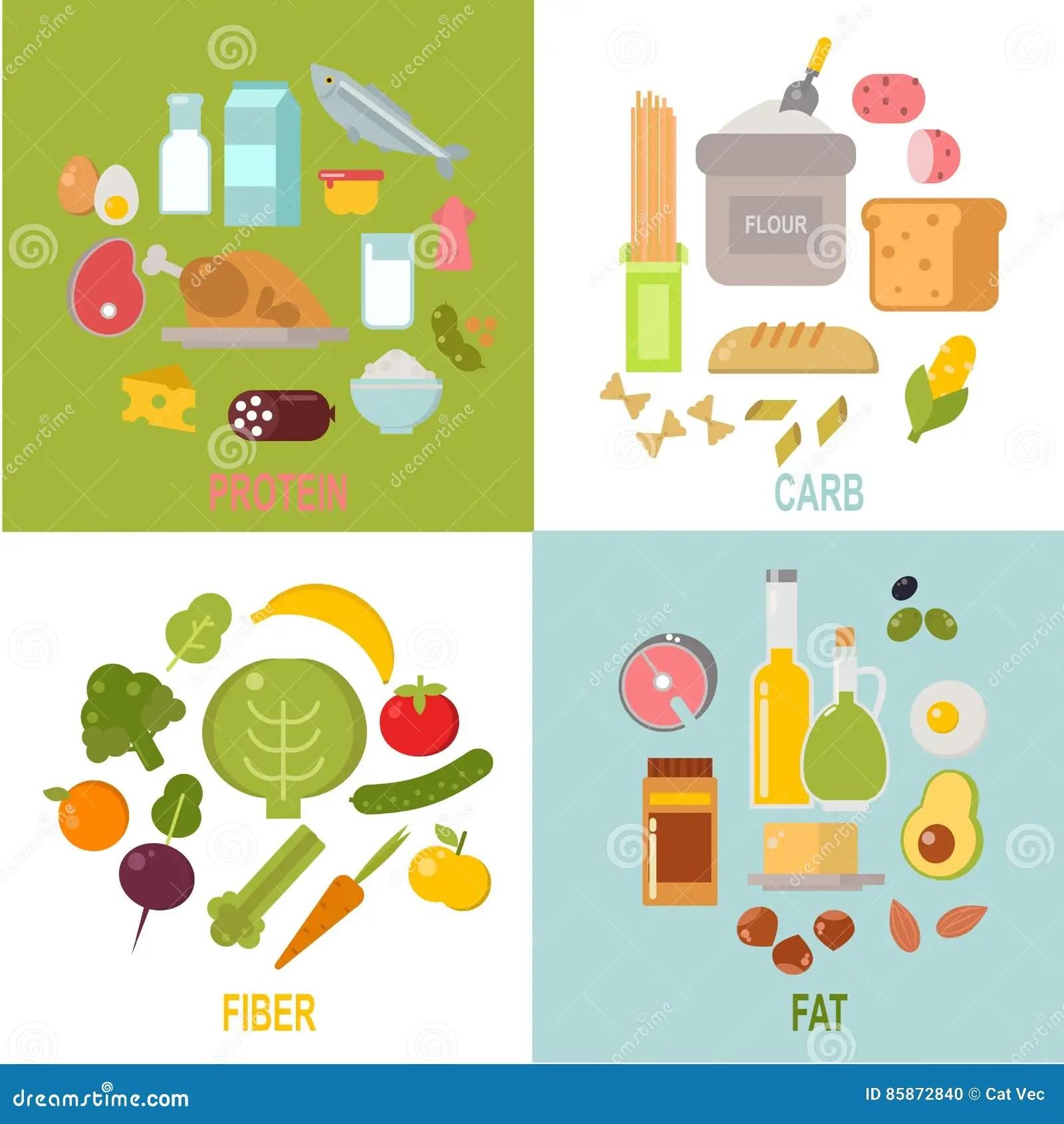Nutricion Sana Vector De Lata Equilibrada De Los