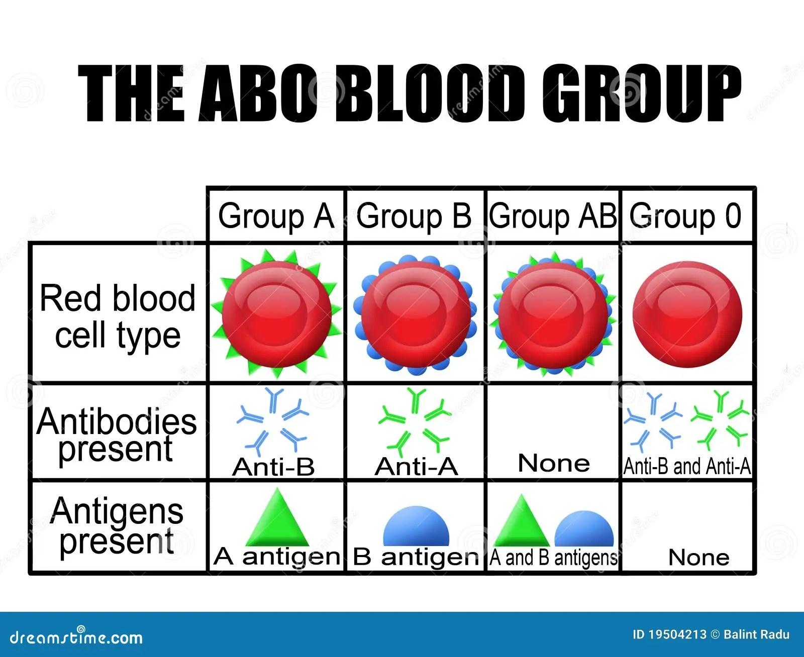 O Diagrama Do Grupo Sanguineo Do Abo Ilustracao Stock