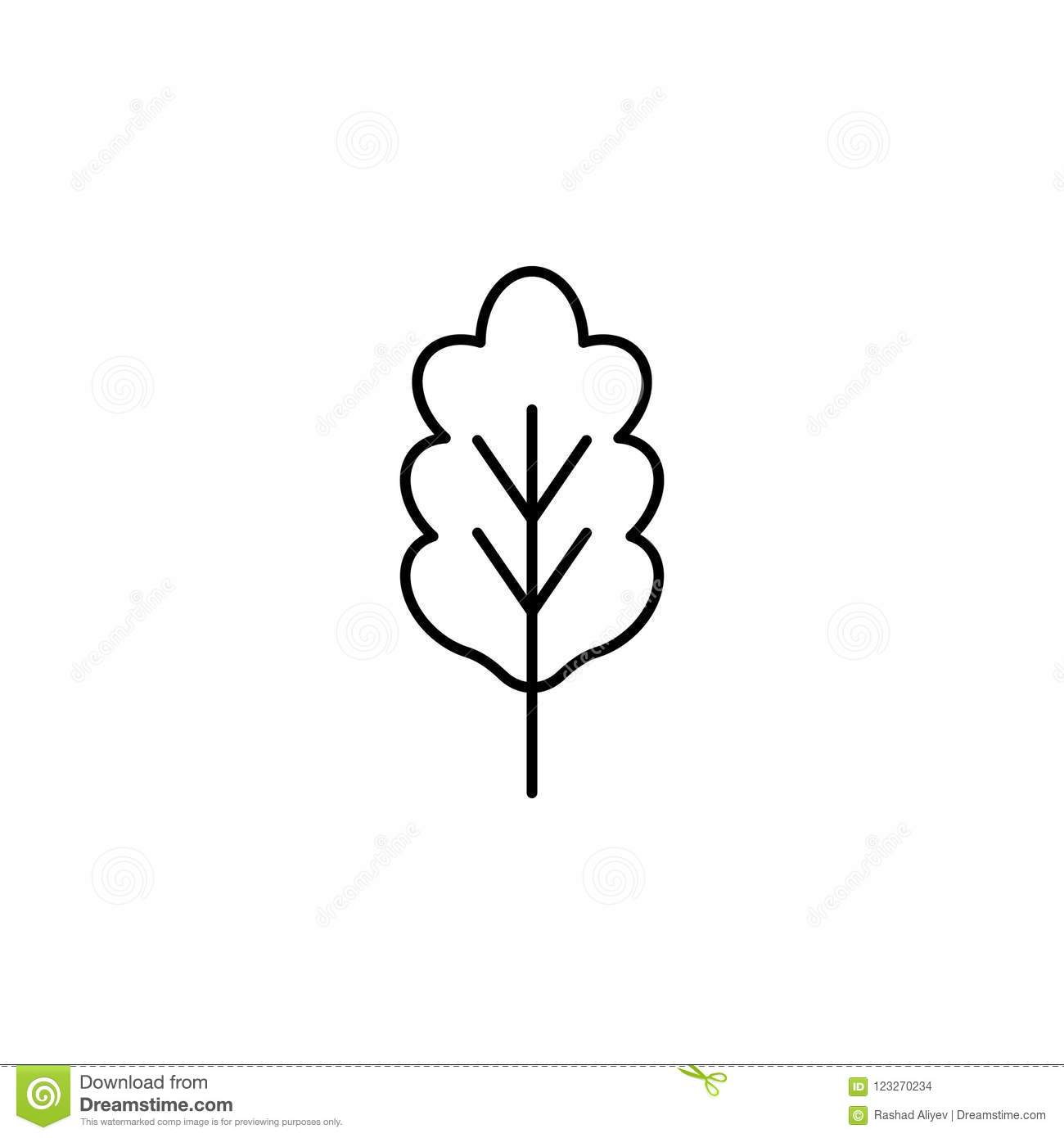 Element Of Nature Icon For Mobile Concept And Web Apps Thin Line Oak Icon Can Be Used For Web And Mobile On White Background